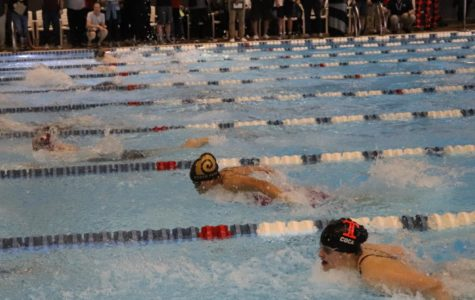 Highland Swim Team Celebrates Their Season's End At State Championships Meet
