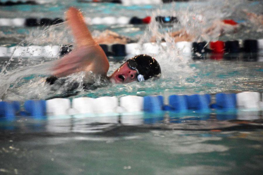 Grace Humbert swimming freestyle.