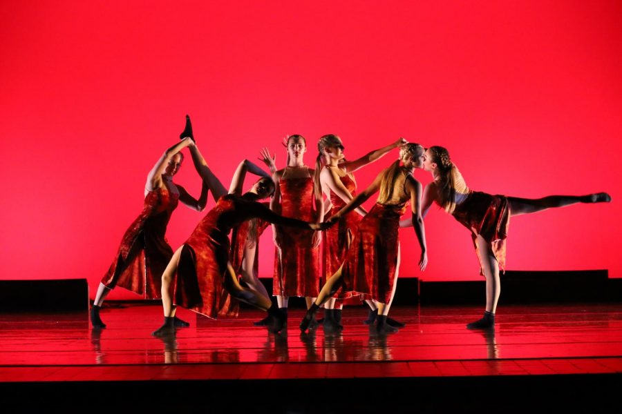 A group of dance company members posing in a group number.